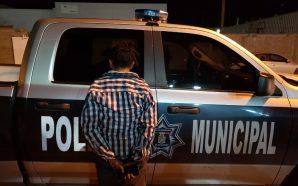 Policías Municipales de Aguascalientes aseguran 90 kilos de marihuana